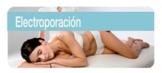 electroporacion-e1435068467761
